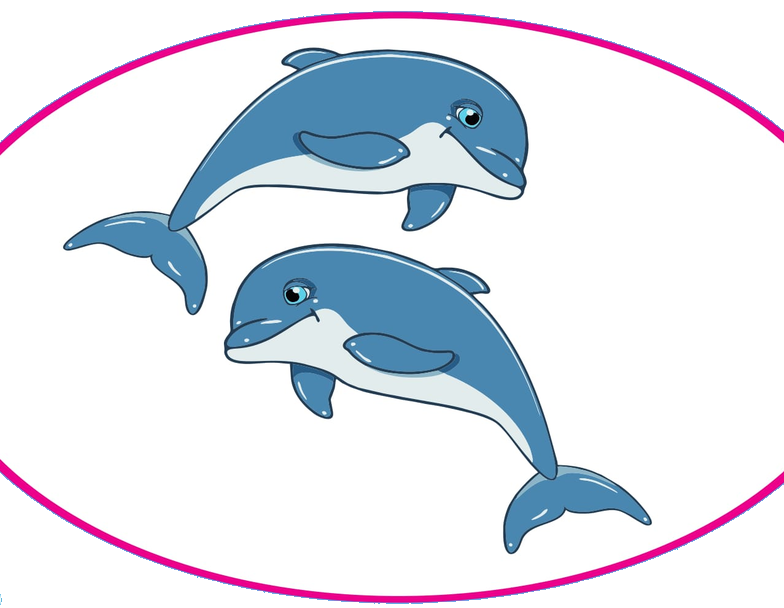 Dolphin Beauty Parlour